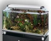 лампы для аквариума